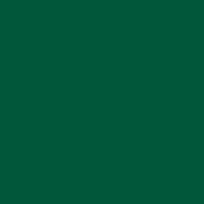 Solid Vinyl Forest Green